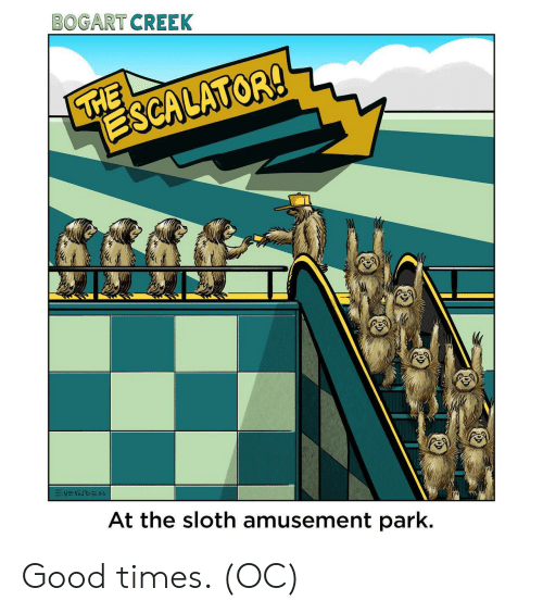 Sloth: BOGART CREEK  THE  ESCALATOR!  VEINDEN  At the sloth amusement park. Good times. (OC)