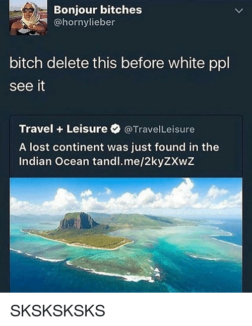 delet this: Bonjour bitches  bitch delete this before white ppl  see it  Travel Leisure @TravelLeisure  A lost continent was just found in the  Indian Ocean tandl.me/2kyZXwZ SKSKSKSKS