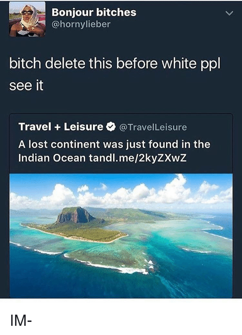delet this: Bonjour bitches  bitch delete this before white ppl  see it  Travel Leisure  @TravelLeisure  A lost continent was just found in the  Indian Ocean tandl.me/2kyZXwZ IM-