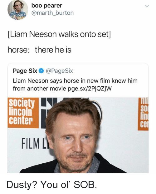 Boo, Funny, and Liam Neeson: boo pearer  @marth burton  Liam Neeson walks onto set  horse: there he is  Page Six @PageSix  Liam Neeson says horse in new film knew hinm  from another movie pge.sx/2PjQZjW  society  lincoln  center  SO  Ce  FILM L Dusty? You ol' SOB.