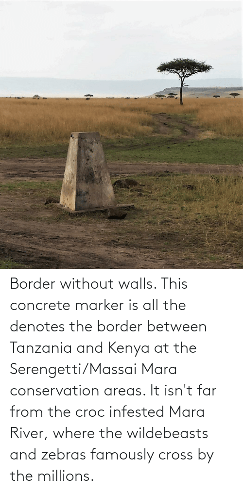 concrete: Border without walls. This concrete marker is all the denotes the border between Tanzania and Kenya at the Serengetti/Massai Mara conservation areas. It isn't far from the croc infested Mara River, where the wildebeasts and zebras famously cross by the millions.