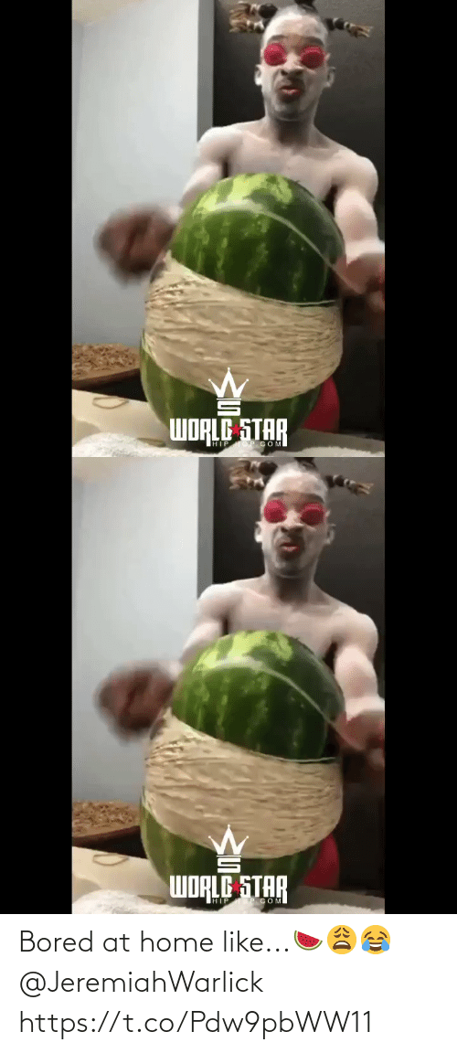 bored: Bored at home like...🍉😩😂 @JeremiahWarlick https://t.co/Pdw9pbWW11