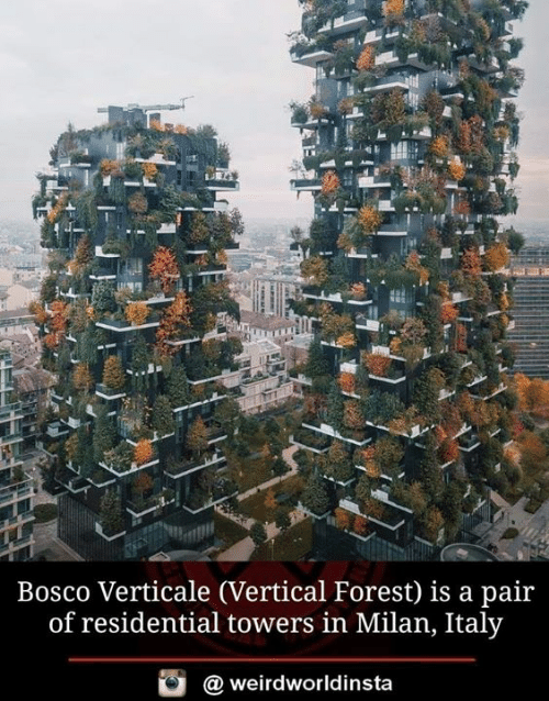 Towers: Bosco Verticale (Vertical Forest) is a pair  of residential towers in Milan, Italy  weirdworldinsta