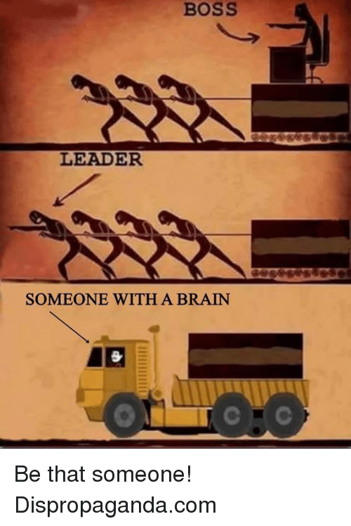 Leader Vs Boss Meme