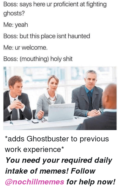 Memes, Shit, and Yeah: Boss: says here ur proficient at fighting  ghosts?  Me: yeah  Boss: but this place isnt haunted  Me: ur welcome.  Boss: (mouthing) holy shit  G: FheFunnyintrovert <p>*adds Ghostbuster to previous work experience*</p><p><b><i>You need your required daily intake of memes! Follow <a>@nochillmemes</a> for help now!</i></b><br/></p>