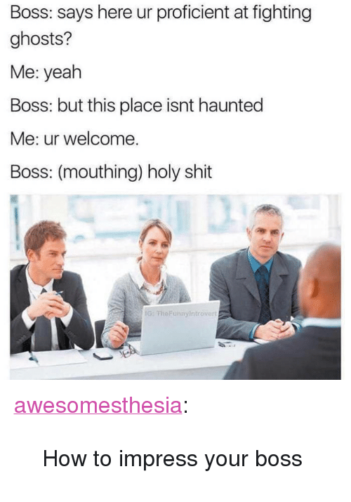 """Shit, Tumblr, and Yeah: Boss: says here ur proficient at fighting  ghosts?  Me: yeah  Boss: but this place isnt haunted  Me: ur welcome.  Boss: (mouthing) holy shit  G: FheFunnyIntrover <p><a href=""""http://awesomesthesia.tumblr.com/post/173289499448/how-to-impress-your-boss"""" class=""""tumblr_blog"""">awesomesthesia</a>:</p>  <blockquote><p>How to impress your boss</p></blockquote>"""