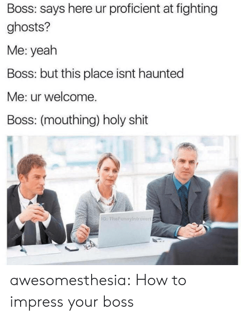 Shit, Tumblr, and Yeah: Boss: says here ur proficient at fighting  ghosts?  Me: yeah  Boss: but this place isnt haunted  Me: ur welcome.  Boss: (mouthing) holy shit  G: FheFunnyIntrover awesomesthesia:  How to impress your boss