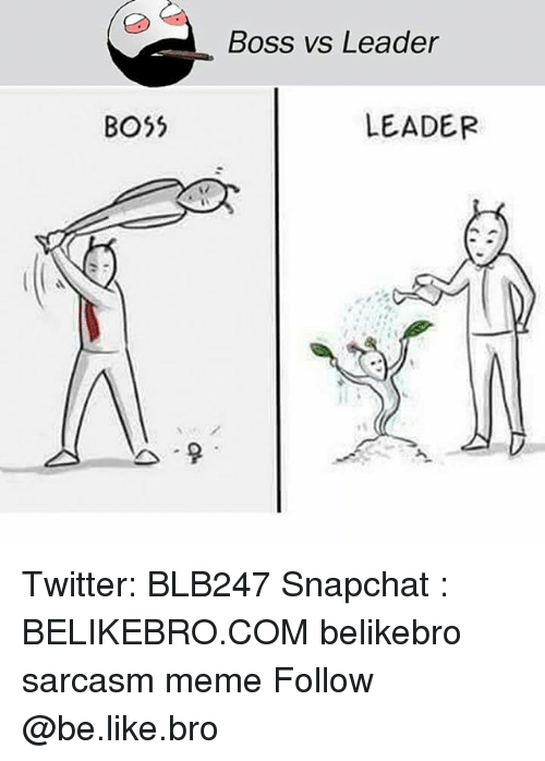 Be Like, Meme, and Memes: Boss vs Leader  BO5  LEADER Twitter: BLB247 Snapchat : BELIKEBRO.COM belikebro sarcasm meme Follow @be.like.bro