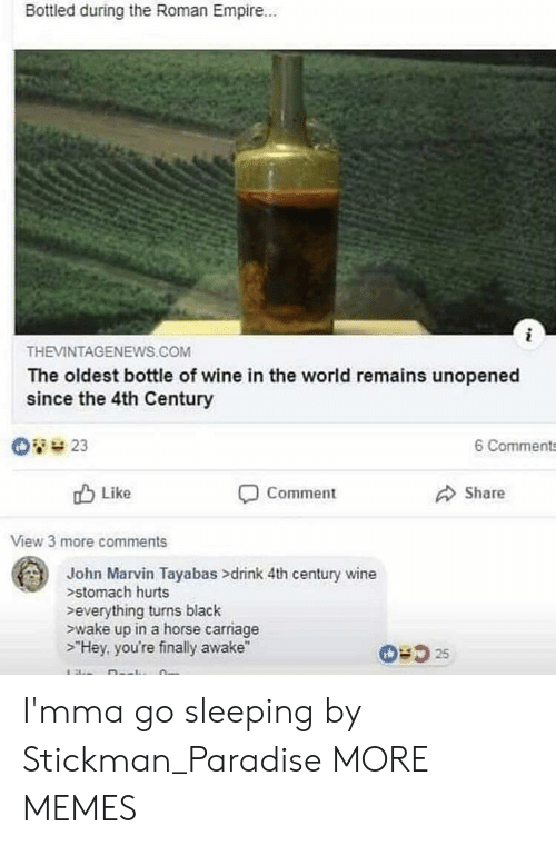 "Dank, Empire, and Memes: Bottled during the Roman Empire..  THEVINTAGENEWS.COM  The oldest bottle of wine in the world remains unopened  since the 4th Century  O23  6 Comments  Like  Share  Comment  View 3 more comments  John Marvin Tayabas >drink 4th century wine  stomach hurts  everything turns black  wake up in a horse carriage  >""Hey, you're finally awake""  0:525 I'mma go sleeping by Stickman_Paradise MORE MEMES"