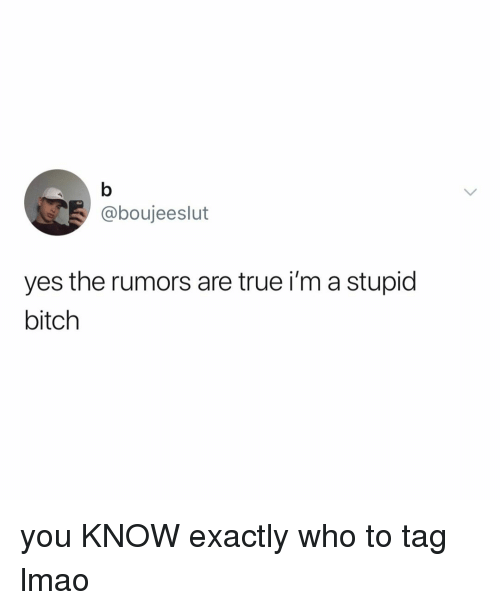 Bitch, Lmao, and True: @boujeeslut  yes the rumors are true i'm a stupid  bitch you KNOW exactly who to tag lmao