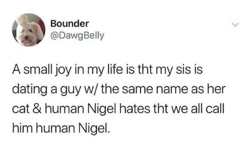Dating, Life, and Joy: Bounder  @DawgBelly  A small joy in my life is tht my sis is  dating a guy w/ the same name as her  cat & human Nigel hates tht we all call  him human Nigel.