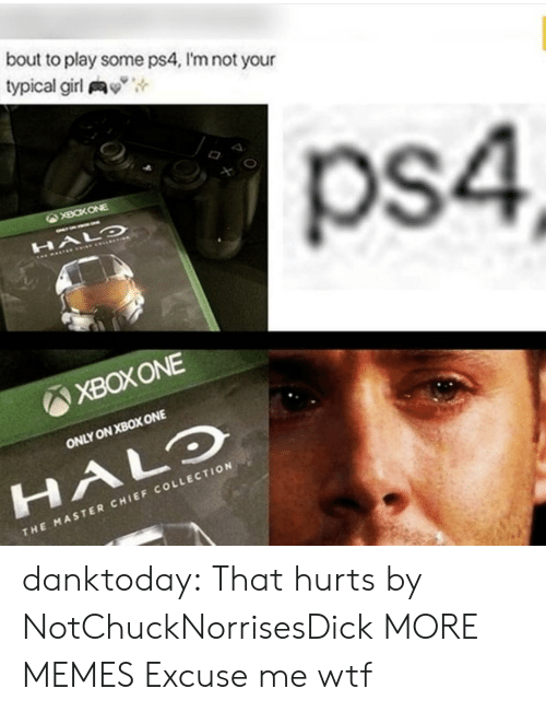 "xbox one: bout to play some ps4, I'm not your  typical girl y"",  ps4  XBOXONE  ONLY ON XBOX ONE  HALO  CHI  THE MASTER CHIEF COLLECTION danktoday:  That hurts by NotChuckNorrisesDick MORE MEMES  Excuse me wtf"