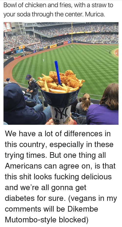Fucking, Memes, and Shit: Bowl of chicken and fries, with a straw to  your soda through the center. Murica. We have a lot of differences in this country, especially in these trying times. But one thing all Americans can agree on, is that this shit looks fucking delicious and we're all gonna get diabetes for sure. (vegans in my comments will be Dikembe Mutombo-style blocked)