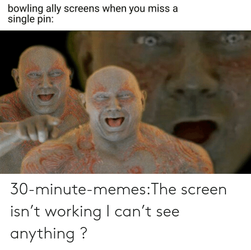 Memes, Target, and Tumblr: bowling ally screens when you miss a  single pin: 30-minute-memes:The screen isn't working I can't see anything ?