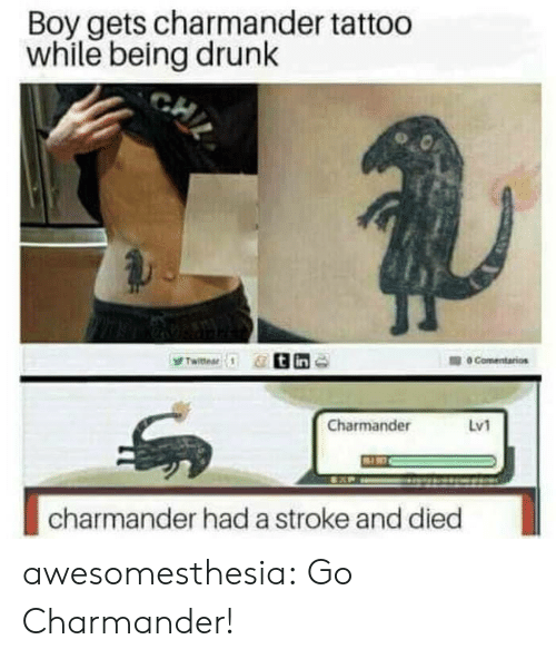 charmander: Boy gets charmander tattoo  while being drunk  Charmander  Lv1  charmander had a stroke and died awesomesthesia:  Go Charmander!