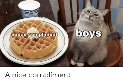 Nice, Boys, and Compliment: boys  anice compliment A nice compliment