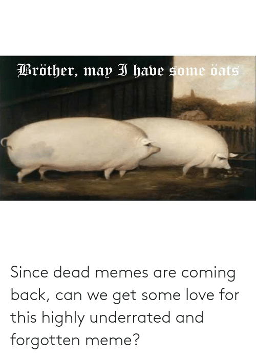 Memes Are Coming: Bröther, may I have some öats Since dead memes are coming back, can we get some love for this highly underrated and forgotten meme?
