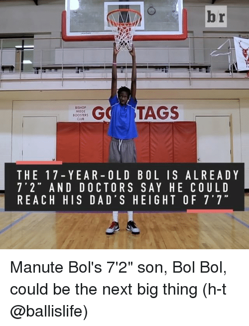 "next-big-thing: br  GC TAGS  BISHOP  MIEGE  BOOSTERS  THE 17 Y EA R OLD B OL I S AL REA D Y  7' 2"" AND DOCTORS SAY HE COULD  REACH HIS DAD'S HEIGHT OF 7'7"" Manute Bol's 7'2"" son, Bol Bol, could be the next big thing (h-t @ballislife)"