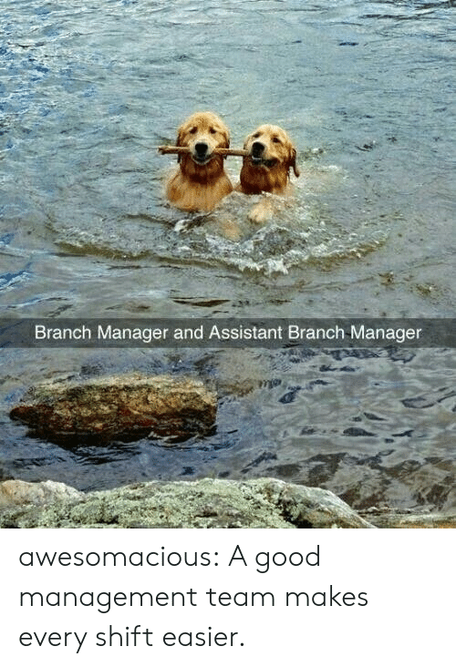 Tumblr, Blog, and Good: Branch Manager and Assistant Branch Manager awesomacious:  A good management team makes every shift easier.