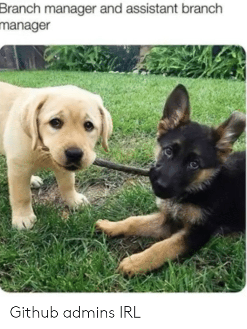 Irl, Github, and Manager: Branch manager and assistant branch  manager Github admins IRL