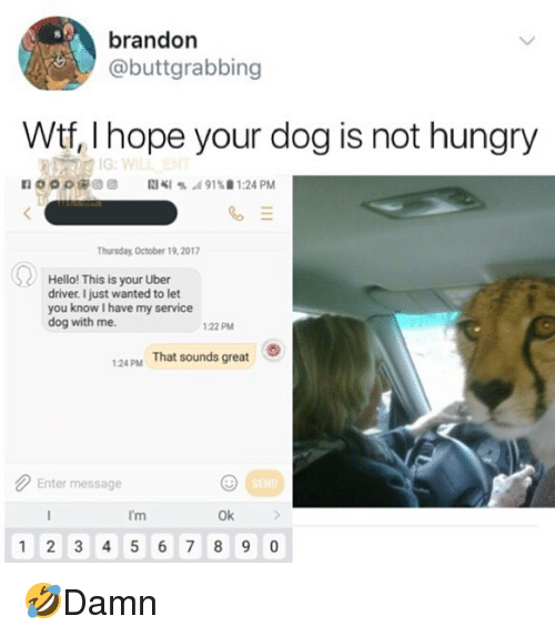 Hello, Hungry, and Memes: brandon  @buttgrabbing  Wtf, I hope your dog is not hungry  n o o o t# @ @  RIKI % .d 91%. 1:24 PM  hursday October 19,2017  Hello! This is your Uber  driver. I just wanted to let  you know I have my service  dog with me.  122 PM  124pM  That sounds great  Enter message  I'm  Ok  1 2 3 456 7 8 9 0 🤣Damn