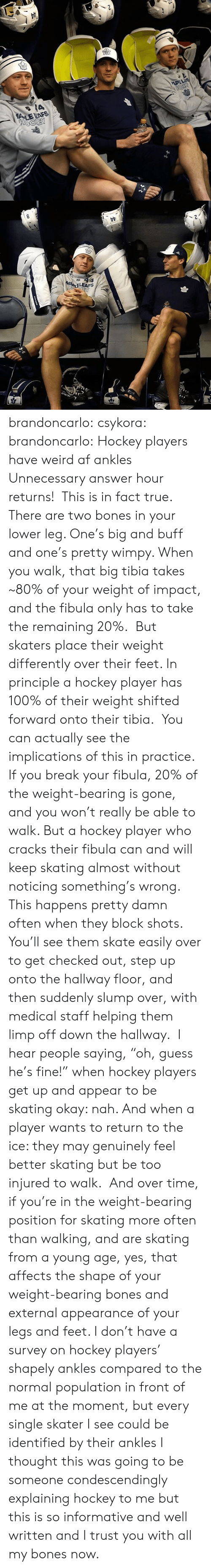 """Informative: brandoncarlo:  csykora:   brandoncarlo: Hockey players have weird af ankles Unnecessary answer hour returns! This is in fact true. There are two bones in your lower leg. One's big and buff and one's pretty wimpy. When you walk, that big tibia takes ~80% of your weight of impact, and the fibula only has to take the remaining 20%. But skaters place their weight differently over their feet. In principle a hockey player has 100% of their weight shifted forward onto their tibia. You can actually see the implications of this in practice. If youbreak your fibula, 20% of the weight-bearing is gone, and you won't really be able to walk. But a hockey player who cracks their fibula can and will keep skating almost without noticing something's wrong. This happens pretty damn often when they block shots. You'll see them skate easily over to get checked out, step up onto the hallway floor, and then suddenly slump over, with medical staff helping them limp off down the hallway. I hear people saying,""""oh, guess he's fine!"""" when hockey players get up and appear to be skating okay: nah. And when a player wants to return to the ice: they may genuinely feel better skating but be too injured to walk. And over time, if you're in the weight-bearing position for skating more often than walking, and are skating from a young age, yes, that affects the shape of your weight-bearing bones and external appearance of your legs and feet. I don't have a survey on hockey players' shapely ankles compared to the normal population in front of me at the moment, but every single skater I see could be identified by their ankles   I thought this was going to be someone condescendingly explaining hockey to me but this is so informative and well written and I trust you with all my bones now."""