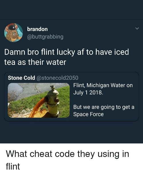 flint michigan: brandor  @buttgrabbing  Damn bro flint lucky af to have iced  tea as their water  Stone Cold @stonecold2050  Flint, Michigan Water on  July 1 2018.  But we are going to get a  Space Force What cheat code they using in flint