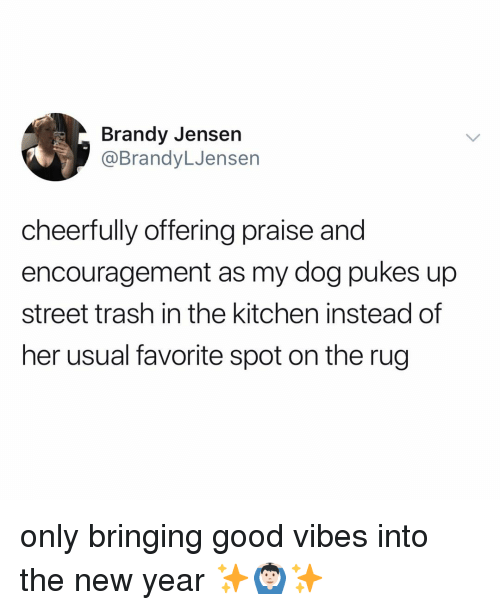 Brandy: Brandy Jensen  @BrandyLJensen  cheerfully offering prai  encouragement as my dog pukes up  street trash in the kitchen instead of  her usual favorite spot on the rug  se and only bringing good vibes into the new year ✨🙆🏻‍♂️✨