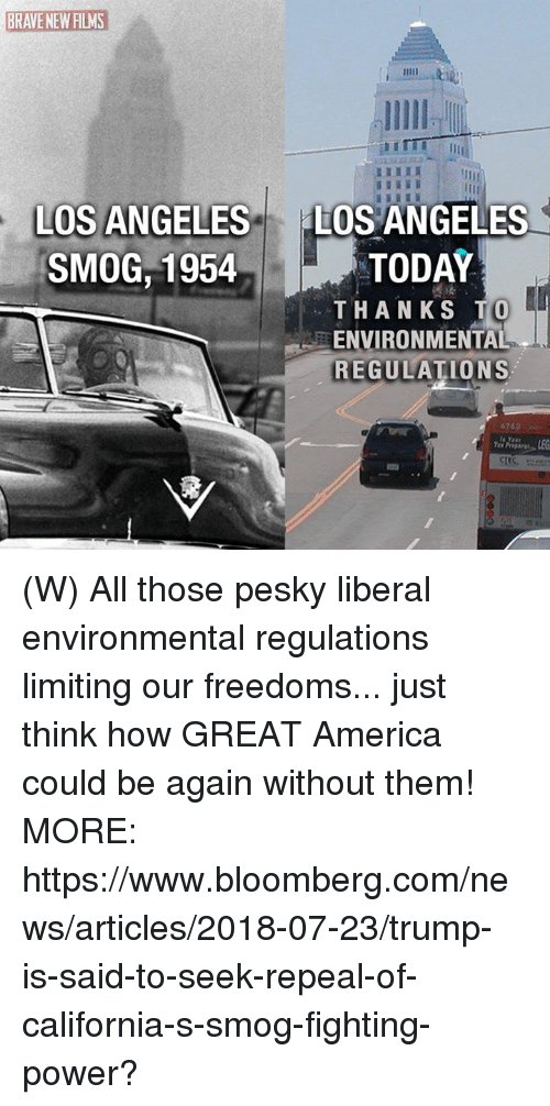 Freedoms: BRAVE NEW FILMS  HI  IL  LOS ANGELES  SMOG,1954  LOS ANGELES  TODAY  THANKS T  ENVIRONMENTAL  REGULATIONS (W) All those pesky liberal environmental regulations limiting our freedoms... just think how GREAT America could be again without them! MORE: https://www.bloomberg.com/news/articles/2018-07-23/trump-is-said-to-seek-repeal-of-california-s-smog-fighting-power?