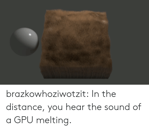 Target, Tumblr, and Blog: brazkowhoziwotzit:  In the distance, you hear the sound of a GPU melting.