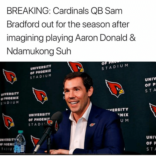 Nfl, Cardinals, and Phoenix: BREAKING: Cardinals QB Sam  Bradford out for the season after  imagining playing Aaron Donald &  Ndamukong Suh  UNIVERSITY  OF PHOENIX  STADIUM  OF  STADIU M  IVERSITY  PHOENIX  SIADIUN  UNIV  OF P  STA  UNIVERSITY  OF PHOENI  STADI  VERSITY  U M  INIVERSITYİ  F PIOENI  ADIU  UNI  OF P  STA