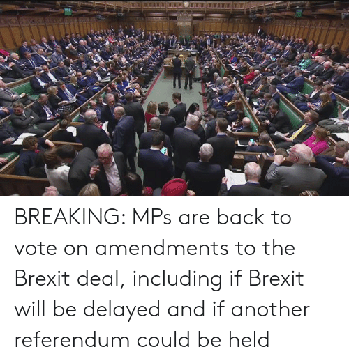Delayed: BREAKING: MPs are back to vote on amendments to the Brexit deal, including if Brexit will be delayed and if another referendum could be held