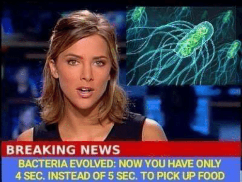 Evolved: BREAKING NEWS  BACTERIA EVOLVED: NOW YOU HAVE ONLY  4 SEC. INSTEAD OF 5 SEC. TO PICK UP FOOD