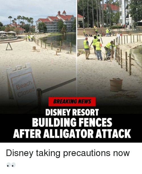precaution: BREAKING NEWS  DISNEY RESORT  BUILDING FENCES  AFTER ALLIGATOR ATTACK Disney taking precautions now 👀