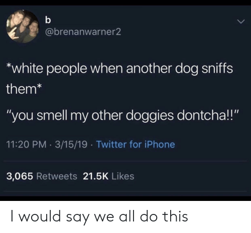 "i would say: @brenanwarner2  white people when another dog sniffs  them*  ""you smell my other doggies dontcha!!""  11:20 PM 3/15/19 Twitter for iPhone  3,065 Retweets 21.5K Likes I would say we all do this"