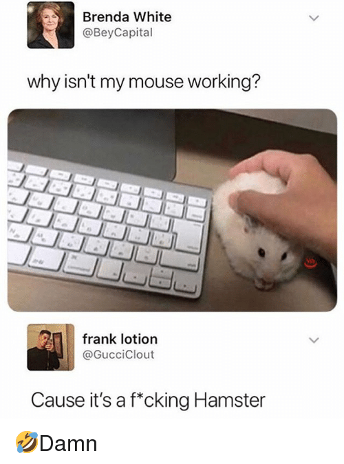 Memes, Hamster, and Mouse: Brenda White  @BeyCapital  why isn't my mouse working?  frank lotion  @GucciClout  Cause it's a fcking Hamster 🤣Damn