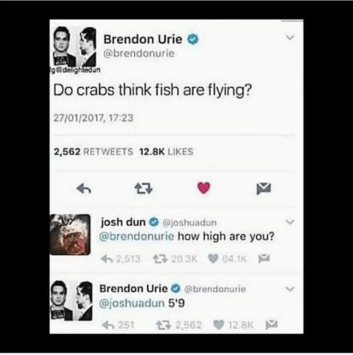 how high: Brendon Urie  @brendonurie  g&delightedun  Do crabs think fish are flying?  27/01/2017, 17:23  2,562 RETWEETS 12.8K LIKES  josh dun  @brendonurie how high are you?  @joshuadun  2,513 20.3K  64.1K  Brendon Urie @brendonurie  @joshuadun 5'9  2,562 12.8K  5251