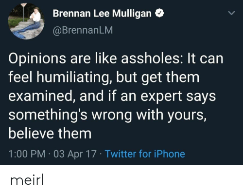 Examined: Brennan Lee Mulligan  @BrennanLM  Opinions are like assholes: It can  feel humiliating, but get them  examined, and if an expert says  something's wrong with yours,  believe them  1:00 PM 03 Apr 17 Twitter for iPhone meirl