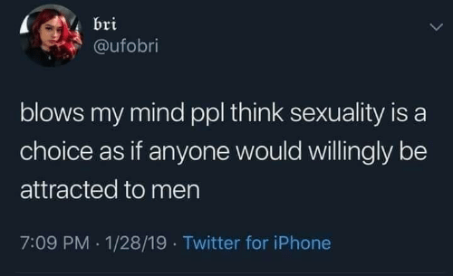 Iphone, Twitter, and Mind: bri  aufobri  blows my mind ppl think sexuality is a  choice as if anyone would willingly be  attracted to men  7:09 PM 1/28/19 Twitter for iPhone