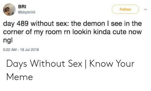 I Need Sex Meme: BRI  @bbybrili  Follow  day 489 without sex: the demon I see in the  corner of my room rn lookin kinda cute now  ng  5:22 AM-18 Jul 2018 Days Without Sex   Know Your Meme
