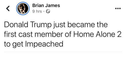 Became: Brian James  9 hrs · O  Donald Trump just became the  first cast member of Home Alone 2  to get Impeached