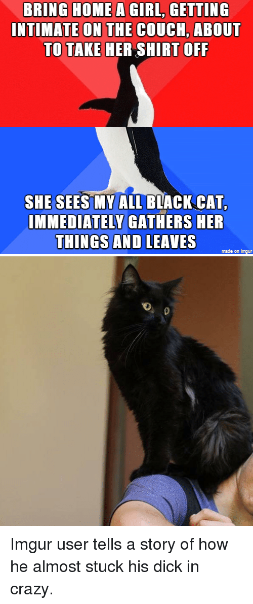 Thathappened: BRING HOME A GIRL GETTING  INTIMATE ON THE COUCH, ABOUT  TO TAKE HER SHIRT OFF  SHE SEES MY ALL BLACK CAT,  IMMEDIATELY GATHERS HER  THINGS AND LEAVES  made on imgur Imgur user tells a story of how he almost stuck his dick in crazy.