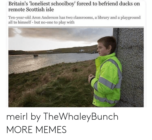 Scottish: Britain's 'loneliest schoolboy' forced to befriend ducks on  remote Scottish isle  Ten-year-old Aron Anderson has two classrooms, a library and a playground  all to himself but no-one to play with meirl by TheWhaleyBunch MORE MEMES