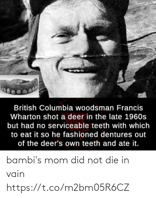 die-in-vain: British Columbia woodsman Francis  Wharton shot a deer in the late 1960s  but had no serviceable teeth with which  to eat it so he fashioned dentures out  of the deer's own teeth and ate it. bambi's mom did not die in vain https://t.co/m2bm05R6CZ