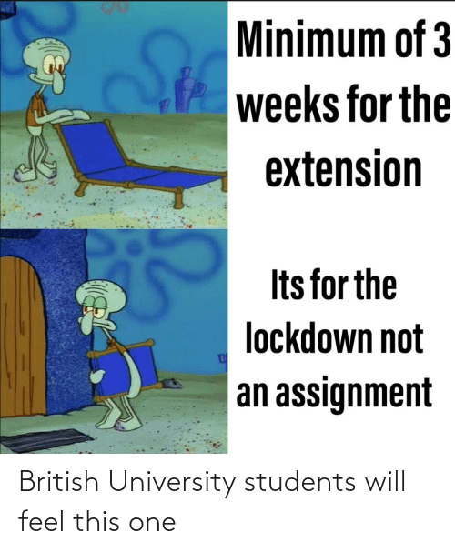 university: British University students will feel this one
