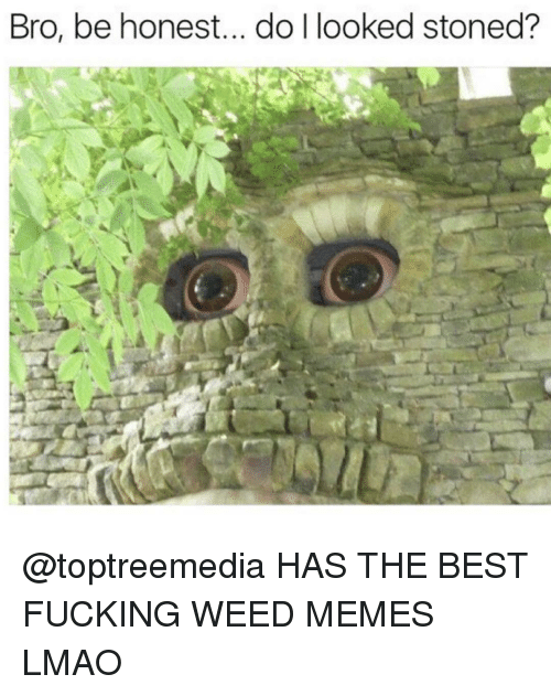 weed meme: Bro, be honest... do looked stoned? @toptreemedia HAS THE BEST FUCKING WEED MEMES LMAO