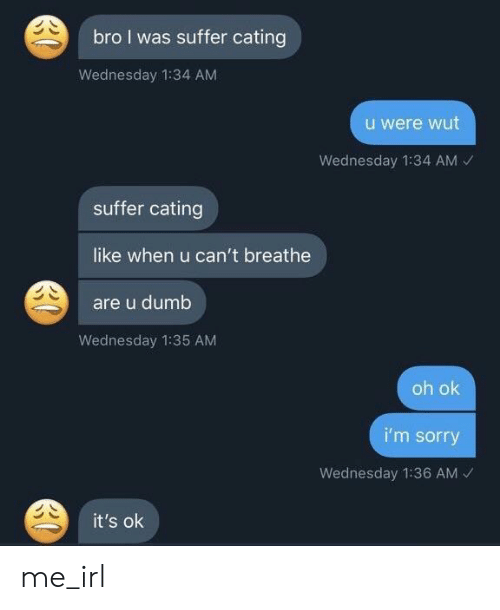 Dumb, Sorry, and Wednesday: bro I was suffer cating  Wednesday 1:34 AM  u were wut  Wednesday 1:34 AM  suffer cating  like when u can't breathe  are u dumb  Wednesday 1:35 AM  oh ok  i'm sorry  Wednesday 1:36 AM  it's ok me_irl