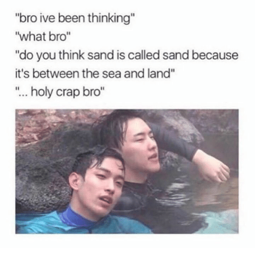 """Crapping: """"bro ive been thinking""""  """"what bro""""  """"do you think sand is called sand because  it's between the sea and land""""  """"... holy crap bro"""""""