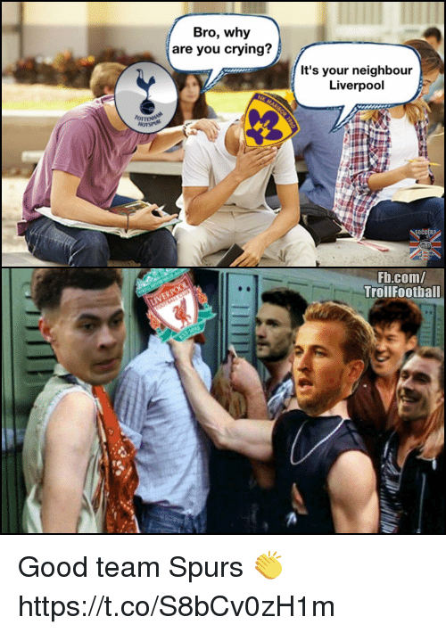 Crying, Memes, and Liverpool F.C.: Bro, why  are you crying?  It's your neighbour  Liverpool  oTTE  Fb.com/  TrollFootball Good team Spurs 👏 https://t.co/S8bCv0zH1m