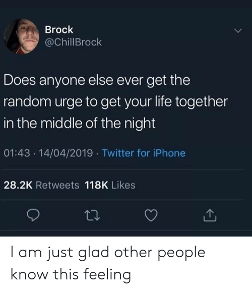Iphone, Life, and Twitter: Brock  @ChillBrock  Does anyone else ever get the  random urge to get your life together  in the middle of the night  01:43 14/04/2019 Twitter for iPhone  28.2K Retweets 118K Likes I am just glad other people know this feeling